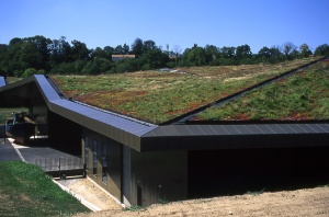 Awesome_Green_Roof